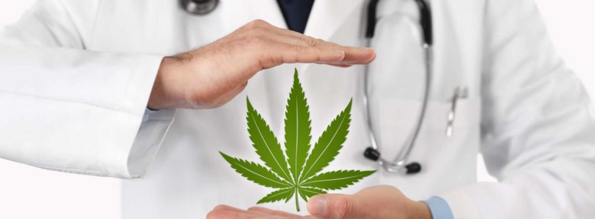 Medyczna marihuana (lecznicza) – Kompendium wiedzy
