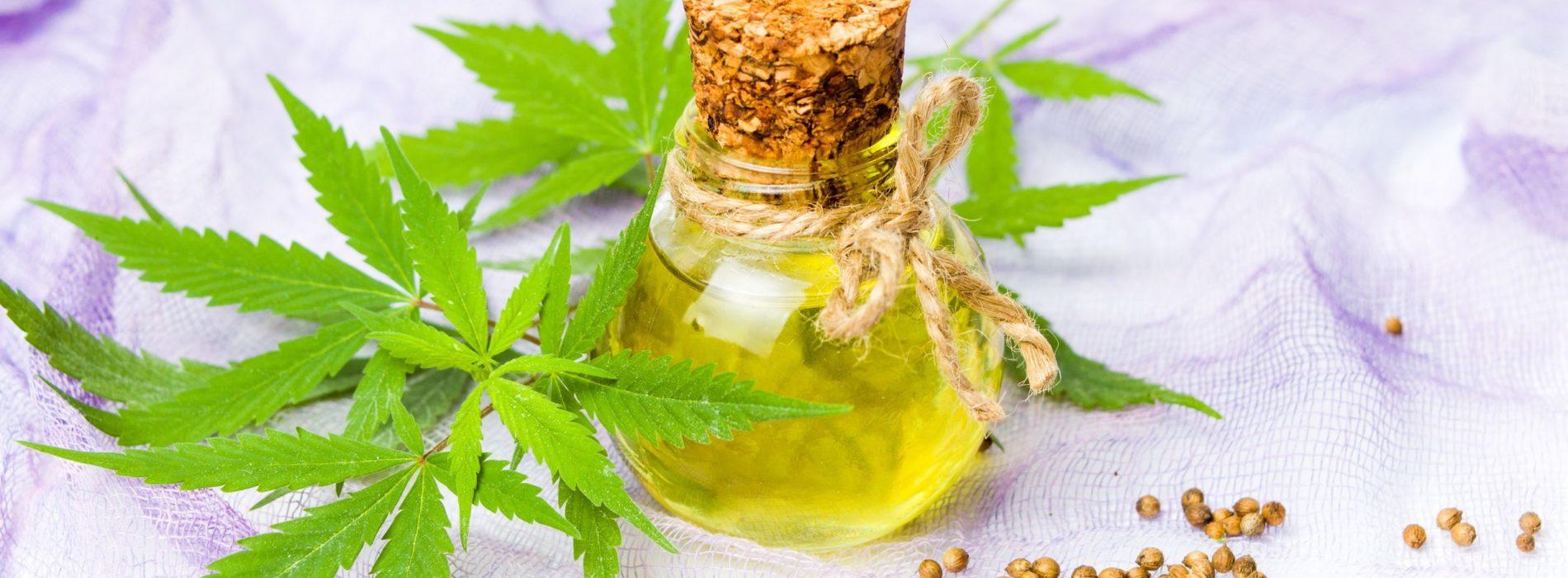 Olej konopny w kuchni – dowiedz się, jak stosować