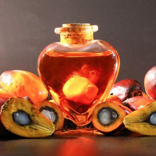 Olej palmowy- Poznaj jego właściwości i zastosowanie