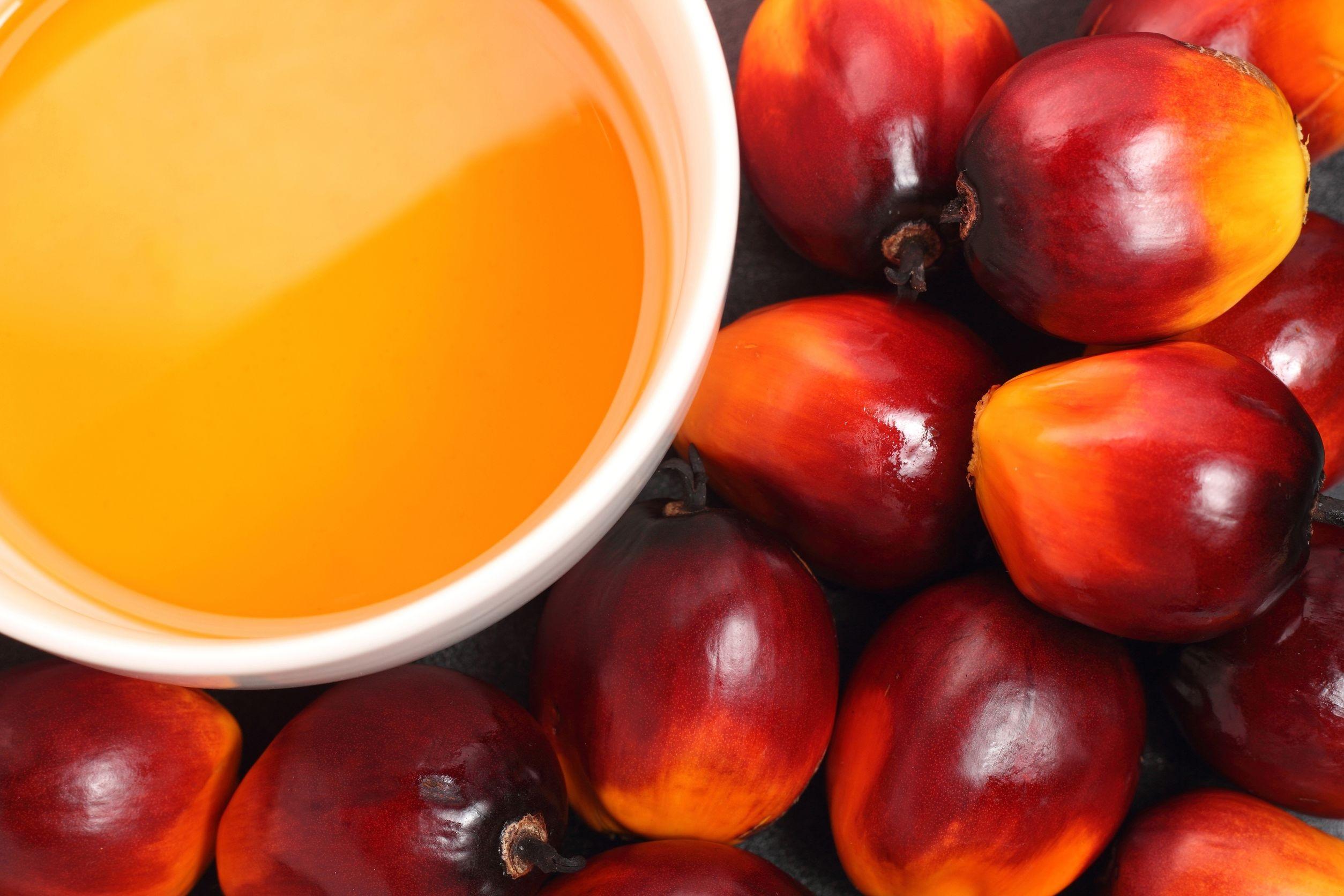 Olej palmowy szkodliwość