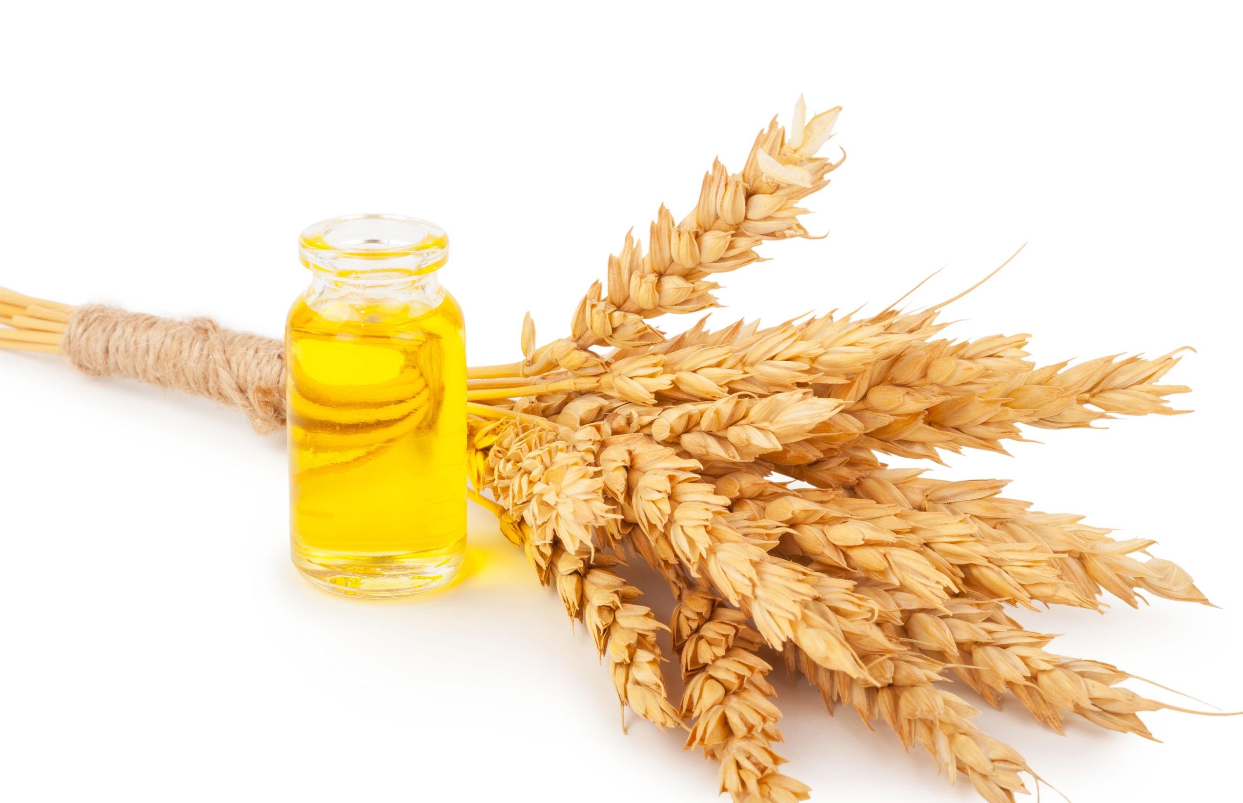 Olej z kiełków pszenicy właściwości