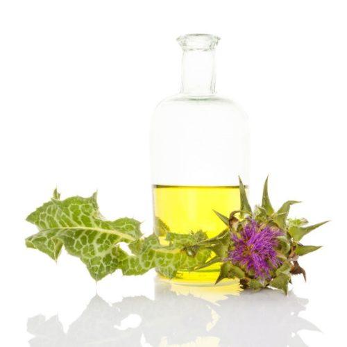 Olej z ostropestu – Właściwości, zastosowanie i dawkowanie