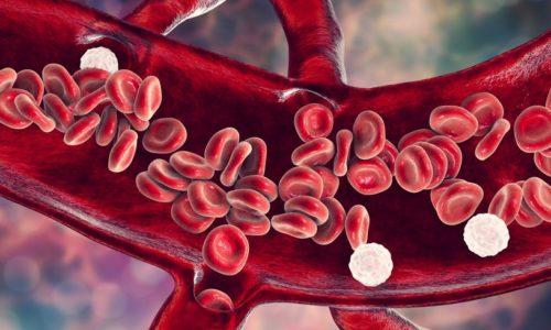 Leukocyty w moczu – Co to, jakie badania i jak leczyć?