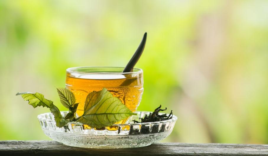 Morwa biała herbata